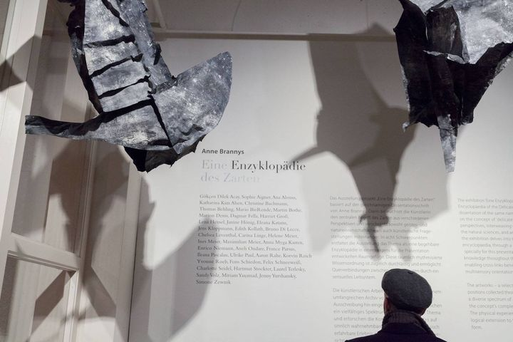 """You can't go to Berlin and not see this: """"Eine Enzyklopädie des Zarten"""" with works by Edith Kollath (among others) curat..."""